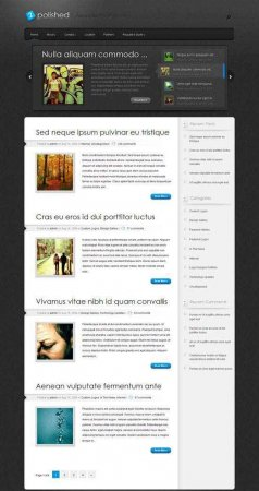 Блоговый шаблон Polished для DLE 9.5 + PSD